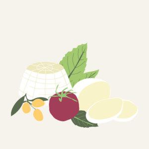 Fresh cheese illustration